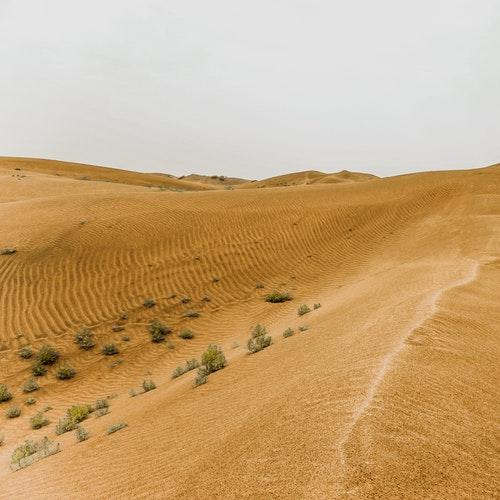 alkarim voyage desert